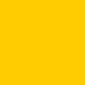 CONRAD SCHNITZLER / Gelb (LP/180g)