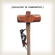 ALESSANDRO ALESSANDRONI / Industrial (LP)