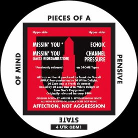 PIECES OF A PENSIVE STATE OF MIND / Pieces Of A Pensive State Of Mind (12 inch)