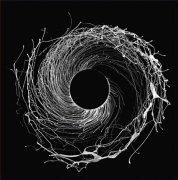 DAWN OF MIDI / Dysnomia (2LP)