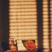 MIKE COOPER / Light On A Wall (LP - orange vinyl)