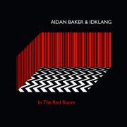 AIDAN BAKER & IDKLANG / In The Red Room (LP+DL)