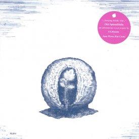 OLD SPLENDIFOLIA / Swaying Boldly Afar (CD 国内盤)