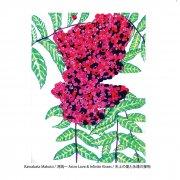 MAKOTO KAWABATA / Astro Love & Infinite Kisses (LP+DL)