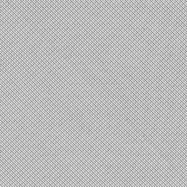 ÓLAFUR ARNALDS & NILS FRAHM / Loon (12