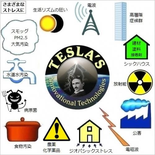 テスラ L ジャパン・スペシャル セット