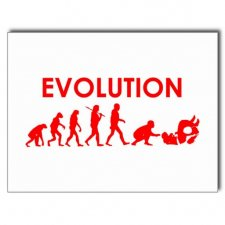 【Jiu Jitsu Evolution】ポストカード