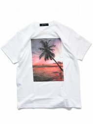 MARBLES/YF SHOOT SUNSET PALMTREE TEE / WHITE<img class='new_mark_img2' src='https://img.shop-pro.jp/img/new/icons1.gif' style='border:none;display:inline;margin:0px;padding:0px;width:auto;' />