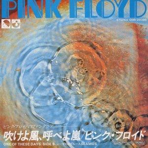 ピンク・フロイド - 吹けよ風、呼べよ嵐 - EMR-20388