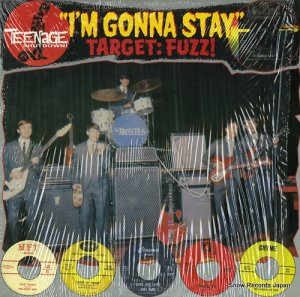 V/A - i'm gonna stay (target:fuzz!) - T.S.6613