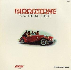 ブラッドストーン - natural high - XPS620
