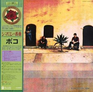 ポコ - シマロンの薔薇 - YX-8031-AB
