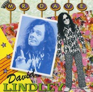 デヴィッド・リンドレー - mr. dave - 252161-1