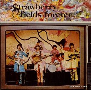 ザ・ビートルズ - strawberry fields forever - CLUE-9