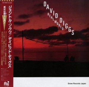 デビッド・ディグズ - ジェントル・ソウツ - VIJ-6407
