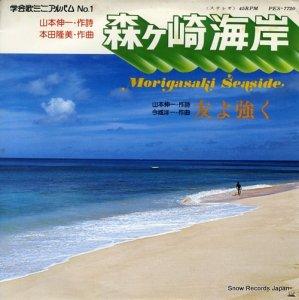 富士交響楽団 - 森ヶ崎海岸 - PES-7720