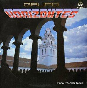 GRUPO HORIZONTES - grupo horizontes - SLP-2307