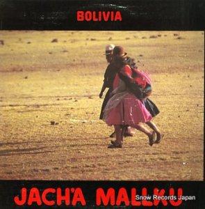 JACH'A MALLKU - bolivia - IBLP-30058