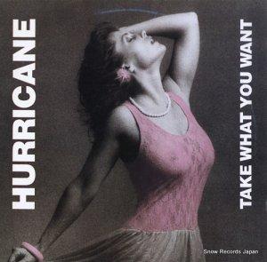 ハリケーン - ハリケーン上陸 - C20Y0194