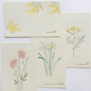 【HUTTE PAPER WORKS】活版印刷のポストカード1