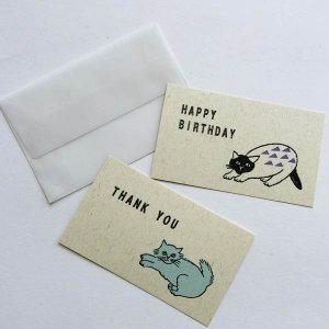【水縞】松尾ミユキ×水縞 メッセージカード小動物(猫)