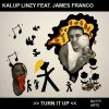 Kalup Linzy Feat. James Franco _ Turn It Up _ Dutty Artz [中古7
