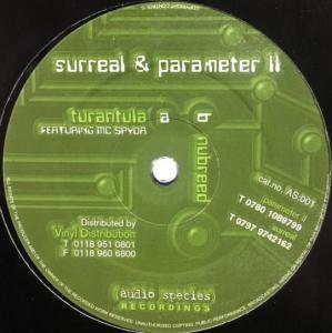 Surreal & Parameter II - Black Moth / Supernatural Remix