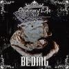 BCDMG _ Ordinary Life [新CD]