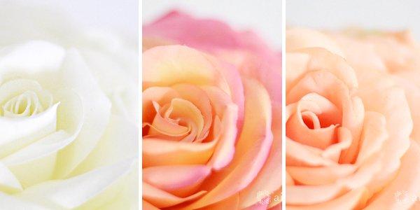 アーティフィシャルフラワー(造花)のバラのメリアブーケ(白)_airaka