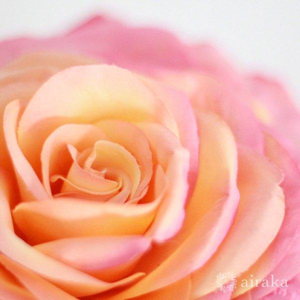 アーティフィシャルフラワー(造花)のバラのメリアブーケ(ピンク)_airaka