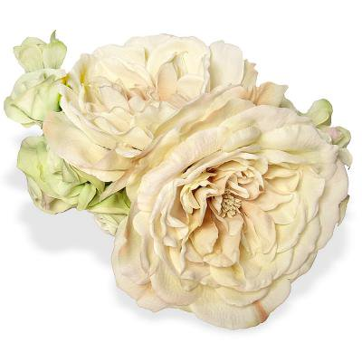 アーティフィシャルフラワー(造花)のプリエールローズのヘッドドレス(クリームグリーン)画像_airaka