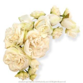 アーティフィシャルフラワー(造花)のフリルローズの髪飾り(クリームホワイト)画像_airaka