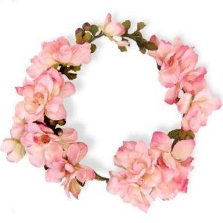 デルフィニウムの花冠(ピンク)