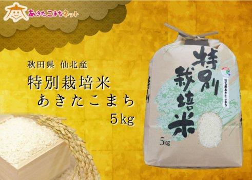仙北産あきたこまち特別栽培米15kg【28年産】