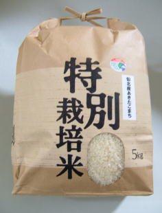 仙北産あきたこまち特別栽培米3kg【28年産】