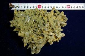 ガネーシュヒマール産 ヒマラヤ緑水晶クラスター 795g