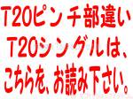 T20PINNTINUTIGAI