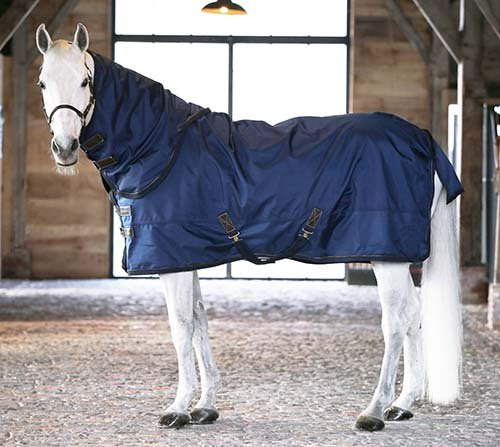 <img class='new_mark_img1' src='//img.shop-pro.jp/img/new/icons11.gif' style='border:none;display:inline;margin:0px;padding:0px;width:auto;' />KENTUCKY  Turnout Rug All Weather 300g