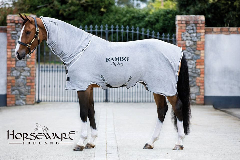 Rambo ドライ ラグ