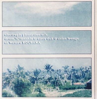 electropic plantation mix drum'n'sanshin & disco dub & asian lounge
