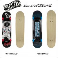 SATELLITE SKATEBOARDS 31inc
