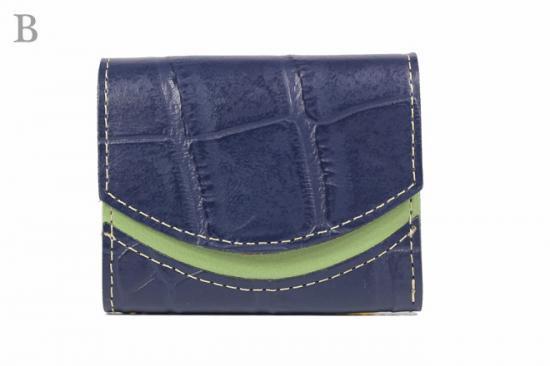 16年10月20日【小さい財布・極小財布】小さいふ。ペケーニョ 【今日の小さいふ】ゾウ:B