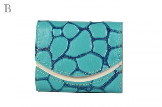 16年11月26日【小さい財布・極小財布】小さいふ。ペケーニョ 【今日の小さいふ】エウロパ:B