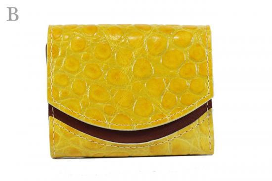 17年2月19日【小さい財布・極小財布】小さいふ。ペケーニョ 【今日の小さいふ】ピサンリ:B