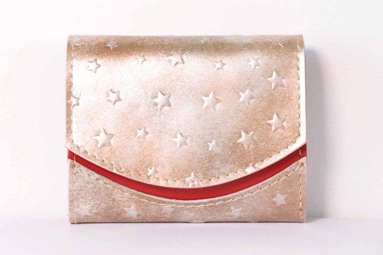 ミニ財布  今日の小さいふシリーズ「ペケーニョ シリウス<  A  >21年2月7日」