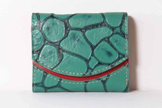 ミニ財布  今日の小さいふシリーズ「ペケーニョ シアノバクテリア<  A  >21年2月12日」