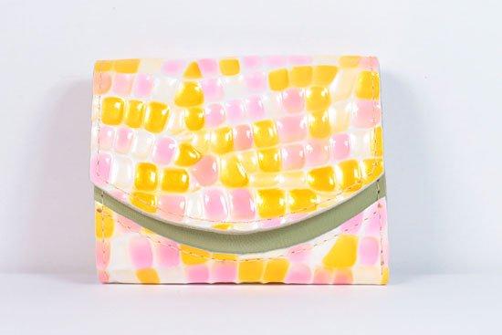ミニ財布  今日の小さいふシリーズ「ペケーニョ ベガ< A >21年6月24日」