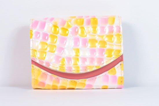 ミニ財布  今日の小さいふシリーズ「ペケーニョ ベガ< B >21年6月24日」
