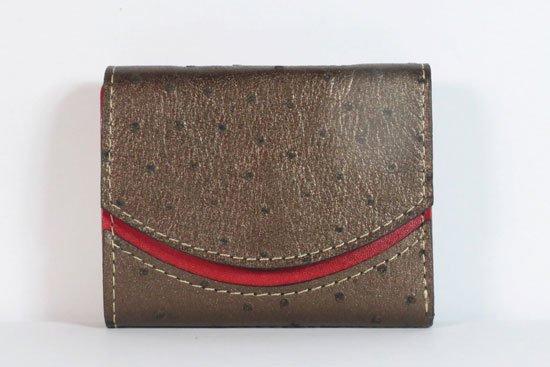ミニ財布  今日の小さいふシリーズ「ペケーニョ クロ< B >21年9月6日」