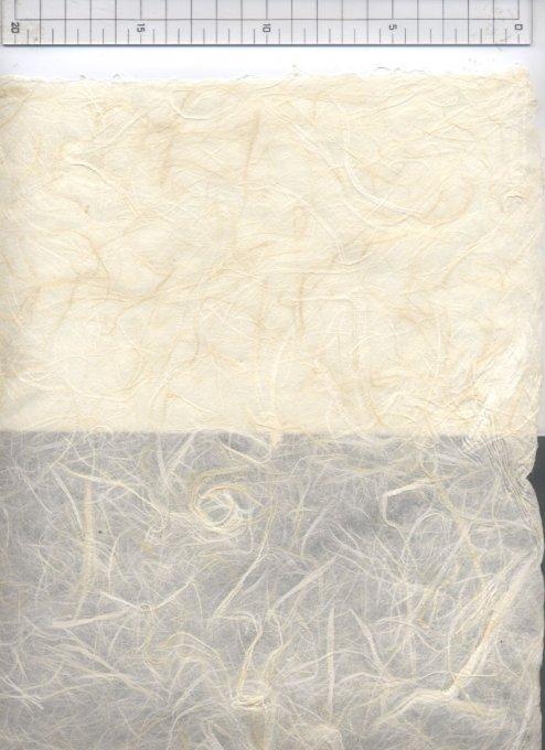 手漉荒筋雲竜紙 未晒(きなり) 小判(34x46cm)
